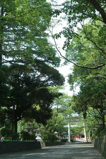 浅間大社 7月27日-3