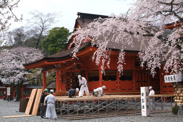 3月27日 浅間大社の桜-2