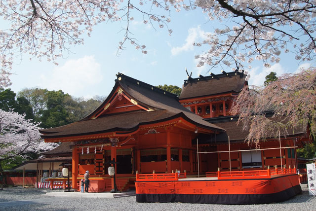 4月3日の桜-7