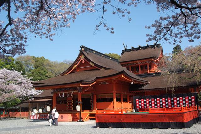 4月6日の桜-2