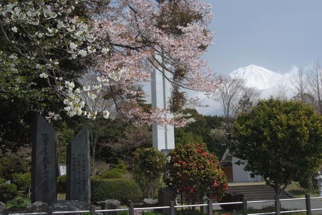 4月15日花霞-3