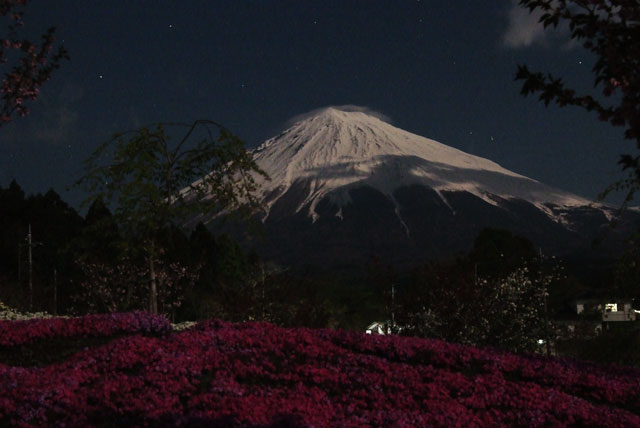 月夜の富士山-4