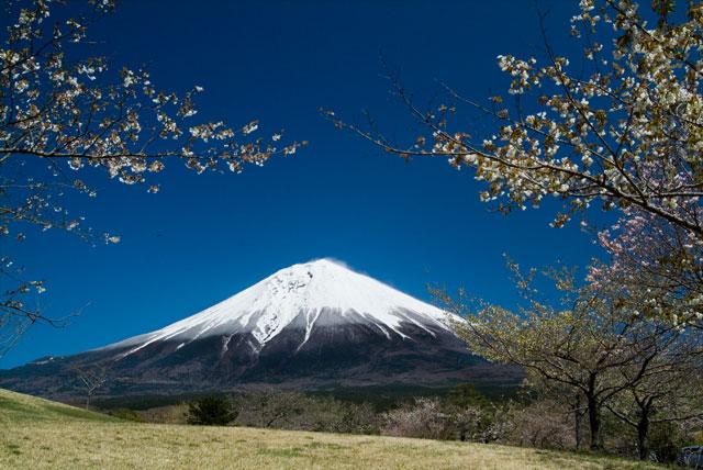 富士桜自然墓地公園 19.4.14-2