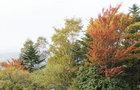 10月24日新五合目-14
