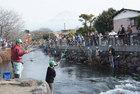 鱒釣り大会-3