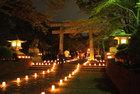 表富士燈回廊-7